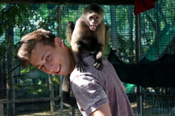 monkeytime ellis 2